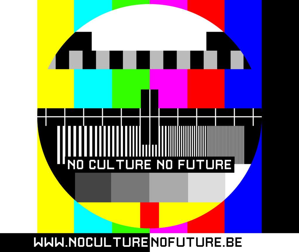 Visuel de la plateforme « No culture no future »